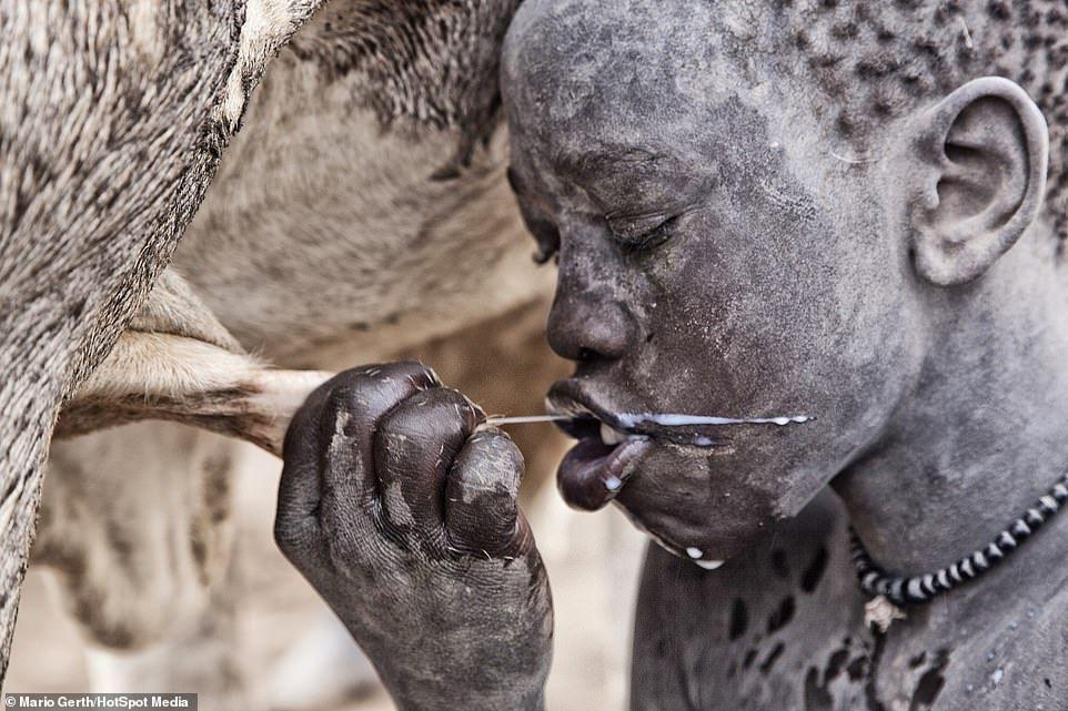 Drink Milk for Health Benefits