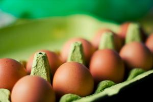 muscle building food-eggs