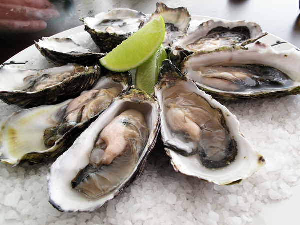 workout food - oysters