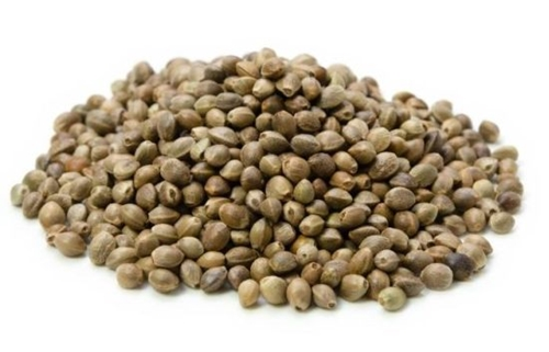 vegetarian foods - hemp seeds