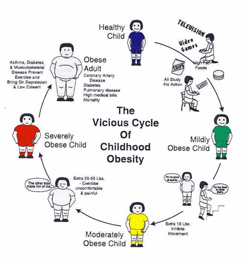 argumentative research papers on obesity Below provided are ten successful prompts for students who want to compose a successful writing piece feel free to use all the ideas you like.