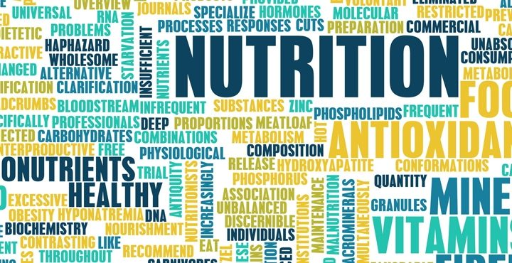 Perfect Nutrition for Perfect Education: 5 Simple Rules
