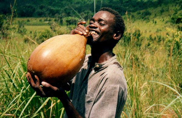 Palm wine health benefits and side effects