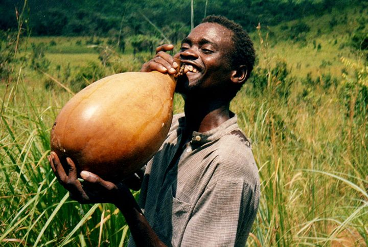 Palm Wine: Health Benefits and Side Effects